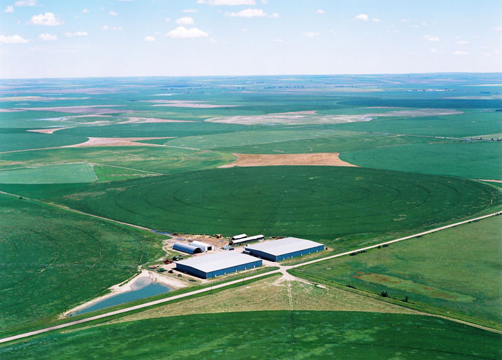Barr-Ag processing facility in Arrowwood, AB.